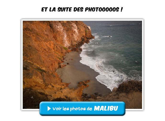 usagi_photos_malibu