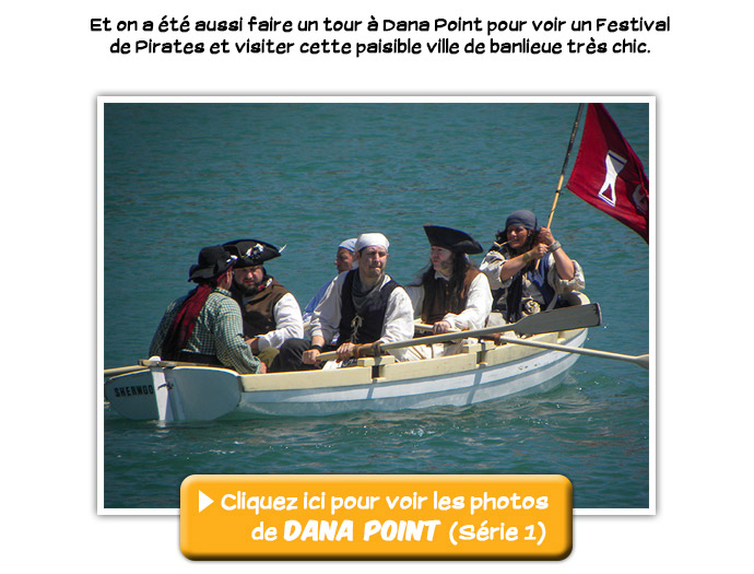 usagi_photos_danapoint1